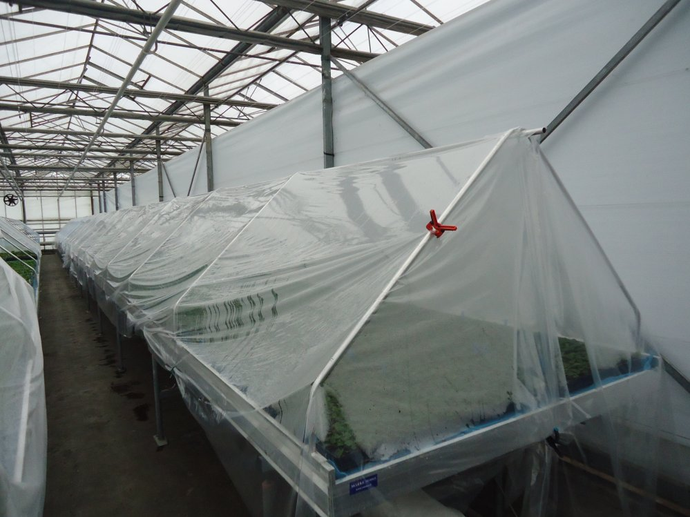 Tent en rolcontainers 1605 x 2,95m 003